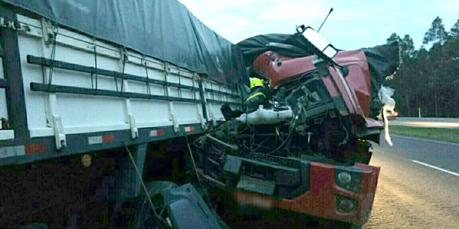 FAZENDA VILANOVA - acidente caminhões NET